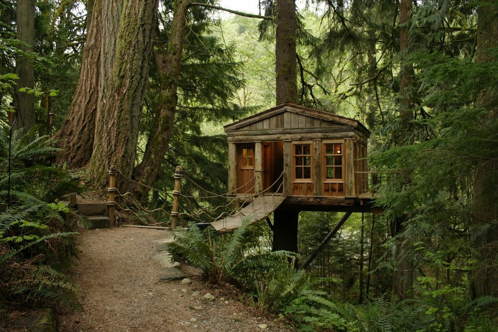 tv shows treehouse masters treehouses